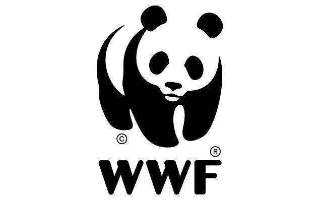 WWF'nin gıda politikası yöneticisi Duncan Williamson, konuyla ilgili şunları söylüyor: