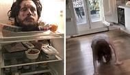 Rose Leslie'nin Ödü Patladı! Jon Snow Nişanlısına Dünyanın En İyi Şakasını Yapmış Olabilir!