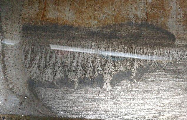 Bir bank demirinde oluşan bu çam ormanı manzarası