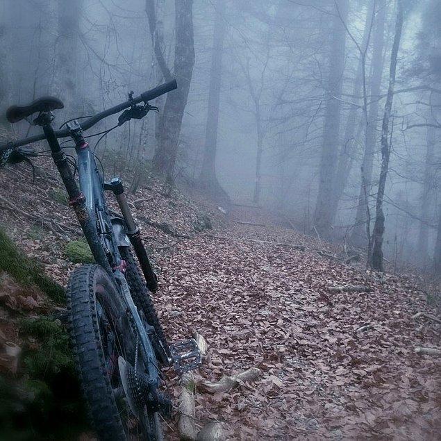 16. Burada bisiklet sürmesi biraz sıkar!