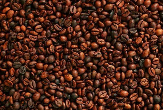 2. Kahve nerede büyür?
