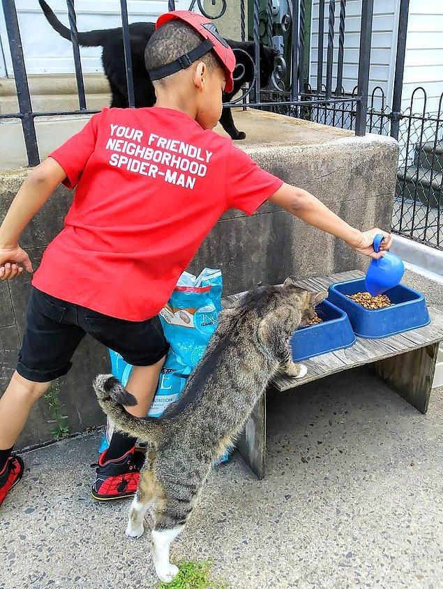 Ancak Bug isimli bir kedi, söz konusu kısırlaştırılmak olduğunda Kris ve nişanlısıyla işbirliği yapmaya yanaşmıyormuş.