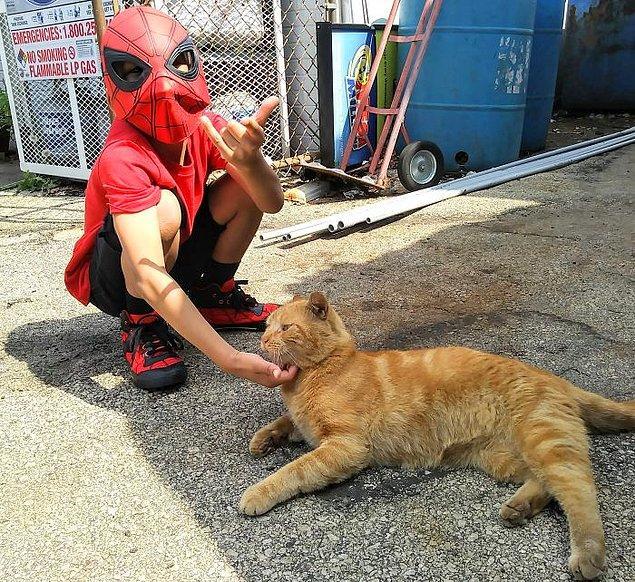 Sonra Kris, yeğeni Shon'un Bug ile çok kolay bağ kurabildiğini fark edince yeğenine kedi ile ilgilenmesi için izin vermiş.