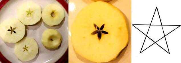 8. Bazı eski kültürler dikey olarak bir elmayı iki cehpe kestiğinizde kadın genital sistemine bir miktar benzer olduğunu, yatay olarak kesildiğinde ise büyülü bir pentegram görülebildiğini fark ettiler.