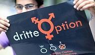 Almanya Avrupa'nın 'Üçüncü Cinsiyeti' Resmi Olarak Tanıyan İlk Ülkesi Olmaya Hazırlanıyor