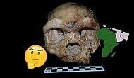 İnsan Irkı Afrika'dan Gelmedi mi? Çin'de Bulunan Kafatası Evrimle İlgili Bildiğimiz Her Şeyi Unutturabilir!