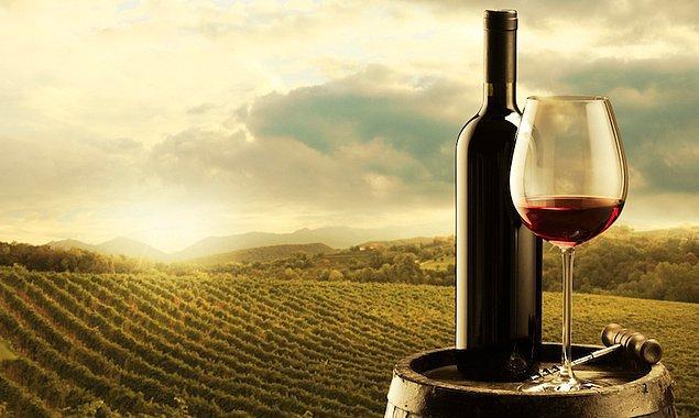 7. Buenos Aires'te dünyaca ünlü Mendoza şaraplarını tadabilirsiniz.