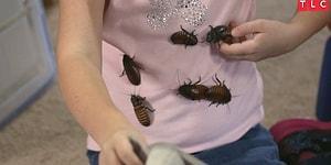 Evcil Hayvan Olarak Evinde 7000 Hamamböceği Besleyen Küçük Kız