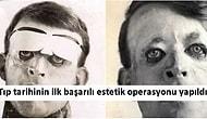Yüz Yıl Önce Artık Dün Kadar Yakın! 1917'de Gerçekleşmiş Birbirinden İlginç 17 Olay