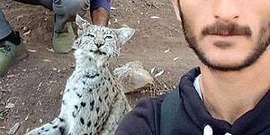 Koruma Altındaydı... Erzurum'da İki Kişi Nesli Tükenmek Üzere Olan Vaşağı Öldürüp 'Selfie' Çekti