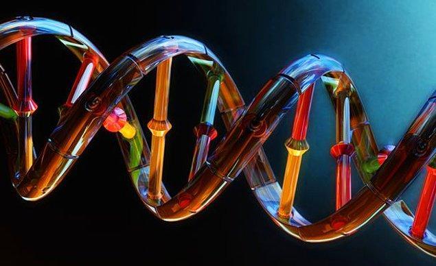 11. 'Gen' Ötesinde Biyoloji