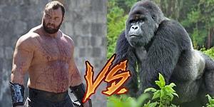 Hangisi Döver? ⚡️ Dünyanın En Güçlü İnsanı mı, Sıradan Bir Goril mi?