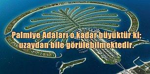 Tüm Zamanların En İddialı Mühendislik Projelerinden Biri Olan Palmiye Adaları'nın Nasıl Yapıldığını Öğrenince Çok Şaşıracaksınız!