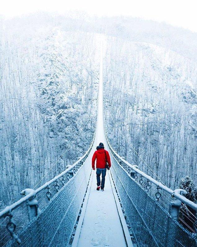11. Ve aynı harika doğadan bir görüntü. Bu gerçek bir köprü ve Almanya'da bulunuyor.