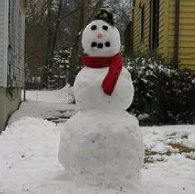 Kardan adam yapmak.