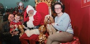 Eşi ve Oğlunun Gözü Yaşlı! Köpeğinin Noel Hediyelerine 5000 TL Harcayan Kadın