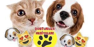 Ponçiklik Alarmı! Kedi ve Köpeğinizi Mest Edip Sizin de Hayatınızı Kolaylaştıracak 12 Hediye