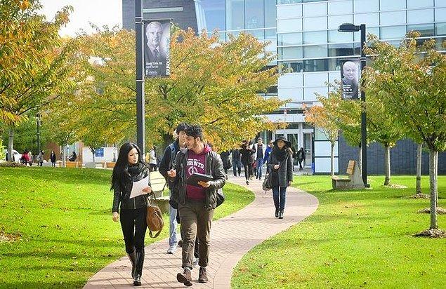 İrlanda'da 1 yıllık master programı yapan öğrenciler, programın ardından 1 yıllık çalışma izni alabiliyorlar.