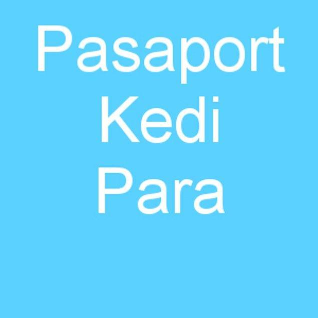 Pasaport Kedi Para!
