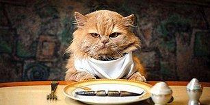 Bu Yiyecek Bilgi Testinde 12/12 Yapmak İmkansız!