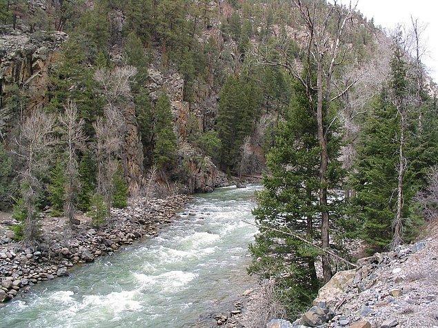 7. Ağaç kurtları çok uzun süre olmasa da sana gereken enerjiyi sağladı. Yoluna devam ederken nehirle karşılaştın. Ne tarafa gideceksin?