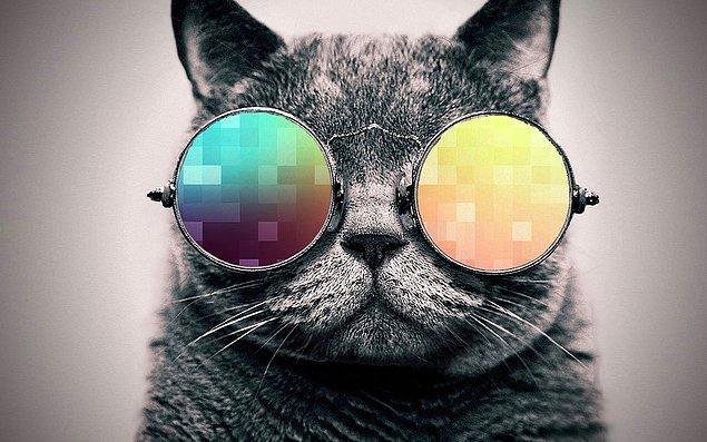 Gizli Cool!