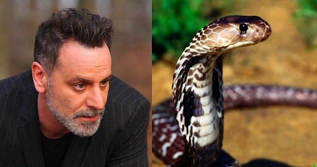Can Manay: Gözlüklü Kobra!