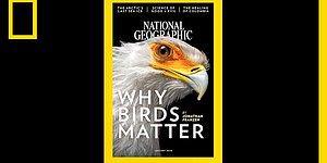 2 Dakikada National Geographic'in 130 Yıllık Dergi Kapakları