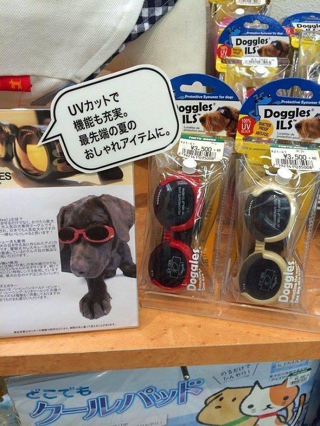 9. Köpekler için güneş gözlüğü. İlk bakışta saçma ve gereksiz bir şeymiş gibi gelse de, köpek dostlarımızın da gözleri bizim gibi güneşe karşı çok hassastır. Neyse ki Japonlar onları da düşünmüşler.