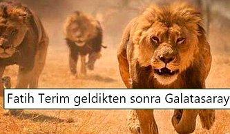 Cimbom'un Fatih Terim'i Varsa Derdi Yok! Kayserispor - Galatasaray Maçının Ardından Yaşananlar ve Tepkiler