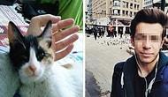 Eskişehir'de İki Kediyi Öldürmek Suçlamasıyla Gözaltına Alınan Üniversiteli Genç Serbest Bırakıldı