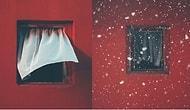 Karşısındaki Bina Yıkılana Kadar 12 Yıl Boyunca Bir Pencerenin Fotoğrafını Çeken Adam