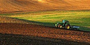 Türkiye Hâlâ Bir Tarım Ülkesi mi? Bakliyat Ekim Alanları 'Son 28 Yılda Yüzde 65 Azaldı'