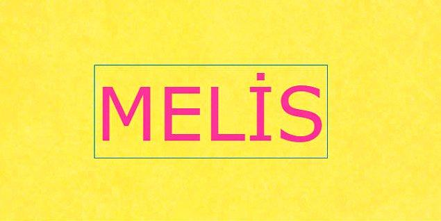 Melis/Mert