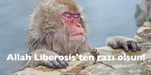 """""""Neden Derhal Liberosis Olmalıyız?"""" Sorusuna Verilebilecek Aşırı Mantıklı 15 Cevap"""