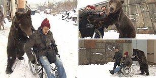 Tekerlekli Sandalyedeki Adam ile Ayının Muhteşem Dostluğu