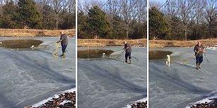 Donmuş Göle Düşerek Çaresizce Yardım Bekleyen Köpeği Kurtaran Güzel İnsan