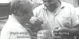 BBC Arşivlerinden 57 Yıl Sonra Çıkan İstanbul Belgeseli