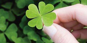Seçeceğin Rastgele Sayılara Göre Ne Kadar Şanslı Biri Olduğunu Söylüyoruz!