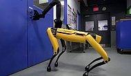 Boston Dynamics'ten Akıllara 'Black Mirror' Dizisini Getiren Video: Robot Köpek SpotMini Kapıları Açıyor!