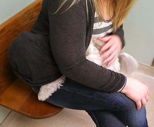 15. Köpeğim veterinerden saklanırken.