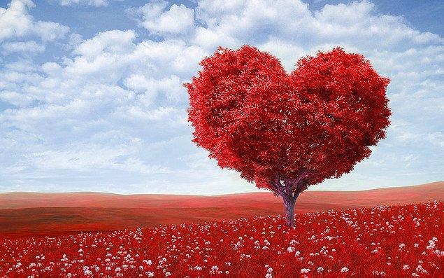 5. Aşk sana ne ifade ediyor?