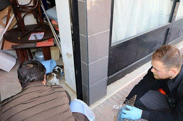 'Rehabilite edilmek üzere müdürlüğümüze götürüldü'