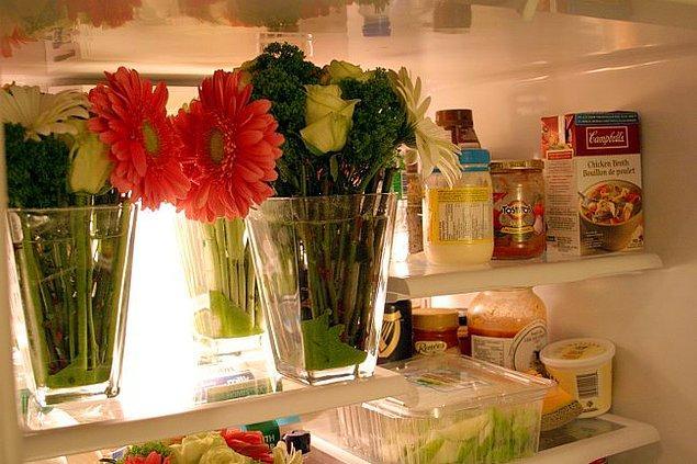 8. Buzdolabı