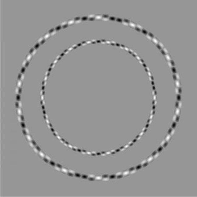 9. Bu çizgiler eğri değil; aksine tam anlamıyla yuvarlak!