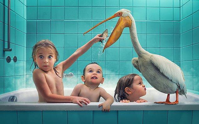 12. Pelikanı Beslerken