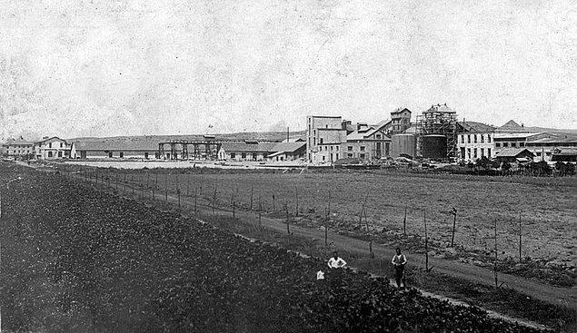 Daha sonra tüm fabrikaları tek çatı altında toplamak için 22 milyon TL sermayeli Türkiye Şeker Fabrikaları A.Ş. kuruldu.