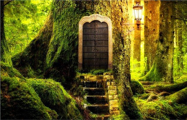 5. Evin kapısı kilitli mi değil mi?