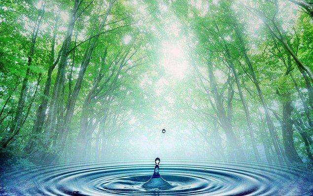 9. Evin diğer kısmına geçtiğinde kendini bir su kenarında buldun. Peki ne tip bir suyun kenarındasın?