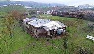 'Kaz Çiftliği' Görünümlü İşkence Yuvası: Yurttan Kaçan Çocuklar Hapsedilmiş, İstismara Uğramış